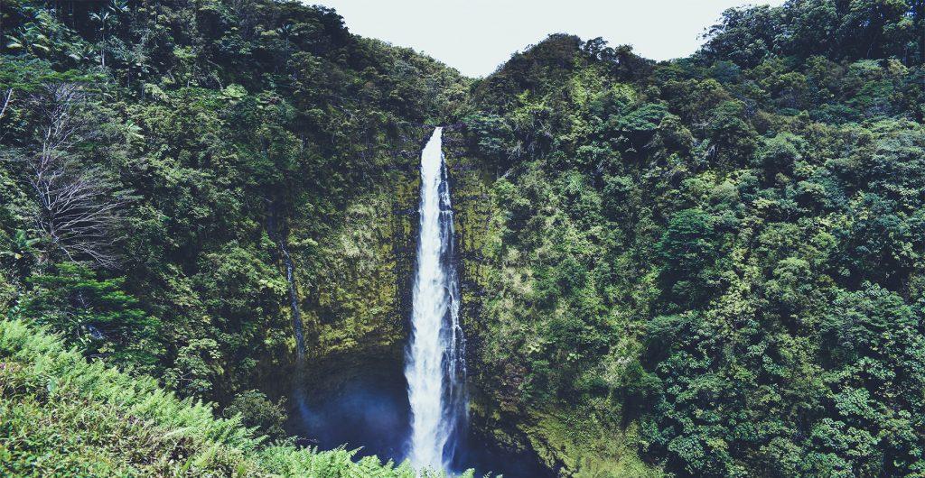 מפל מים - הטבע של מאוריציוס