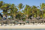 חוף הים בצל הדקלים - ורנדה פלמאר - מאוריציוס